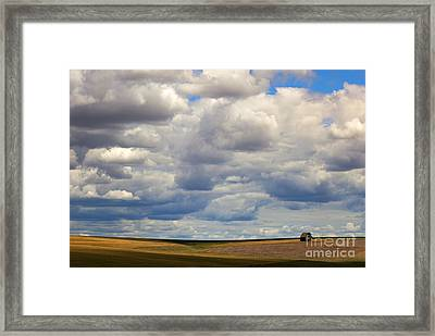 Insignificant Framed Print by Mike  Dawson