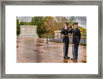 Inspection Framed Print by Jerry Fornarotto