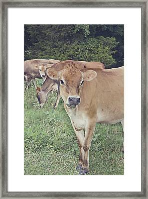 Inspiration Framed Print by Danielle Keltner
