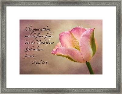 Inspirational Tulip Framed Print by Mary Jo Allen