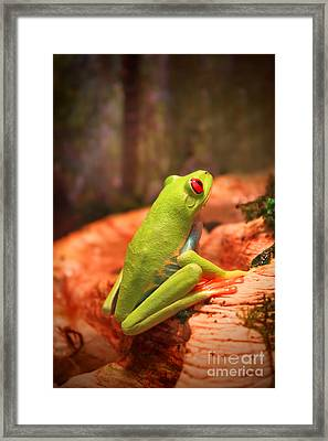 Framed Print featuring the photograph Inspirations For Tomorrow by Cathy  Beharriell