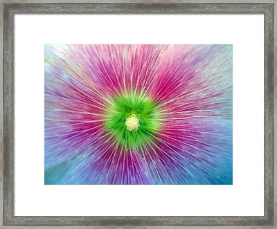 Inspire Framed Print by Mike Podhorzer