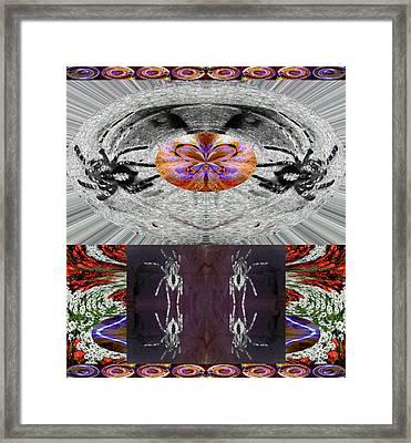 Inspiring Trust Spider - Spirit 2013 Framed Print by James Warren