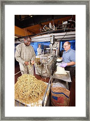 Instant Corn-soy Blend Research Framed Print