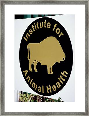 Institute For Animal Health Sign Framed Print by David Hay Jones/science Photo Library