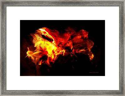 Intellectual Ignition Framed Print by Donna Blackhall