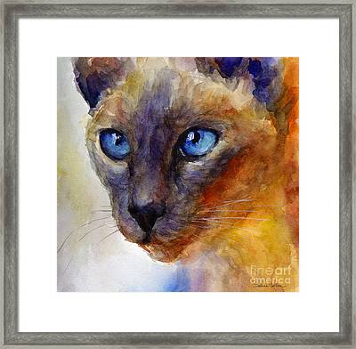 Intense Siamese Cat Painting Print 2 Framed Print by Svetlana Novikova