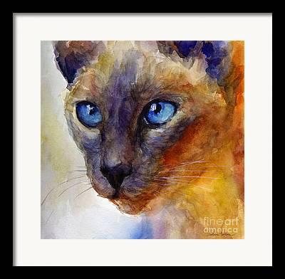 Kitten Giclee Drawings Framed Prints
