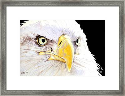 Intensity Framed Print