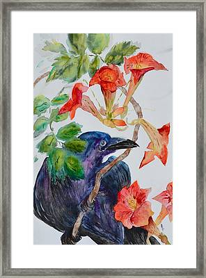 Intent Framed Print by Beverley Harper Tinsley