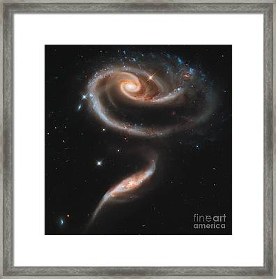 Interacting Galaxies Arp 273 Framed Print by Science Source