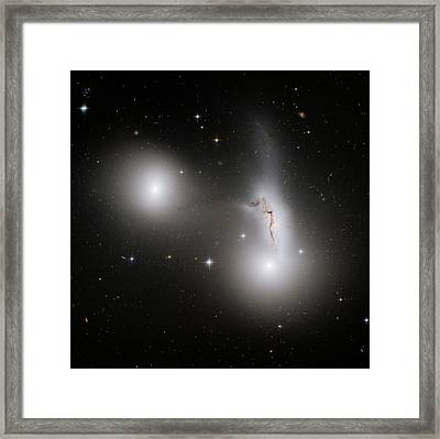 Interacting Galaxies In Hcg 90 Framed Print by Nasa/esa/stsci/r. Sharples, University Of Durham