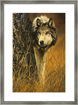 Interested Framed Print by Lucie Bilodeau