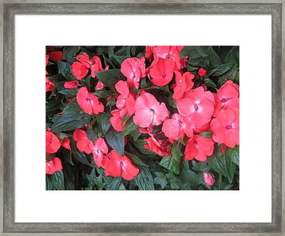 Framed Print featuring the photograph Interior Decorations Butterfly Garden Flowers Romantic At Las Vegas by Navin Joshi