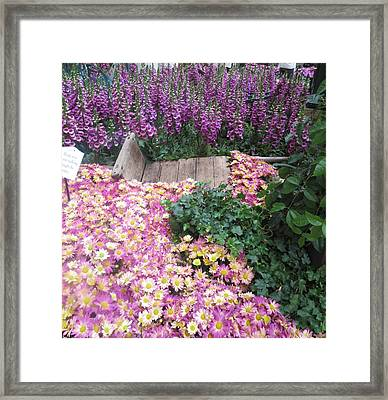 Framed Print featuring the photograph Interior Decorations Butterfly Gardens Vegas Golden Yellow Purple Flowers by Navin Joshi