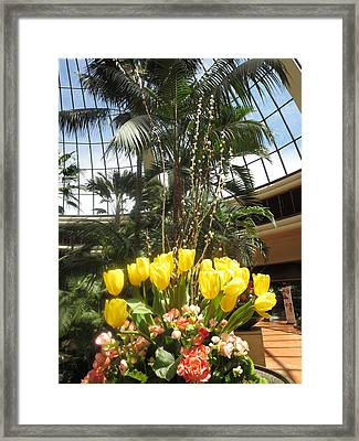 Framed Print featuring the photograph Interior Decorations Butterfly Gardens Vegas Golden Yellow Tulip Flowers by Navin Joshi