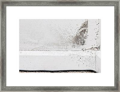 Interior Mildew Framed Print by Tom Gowanlock
