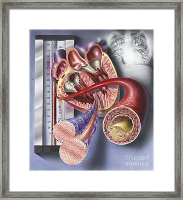 Interior View Of Heart With Detail Framed Print