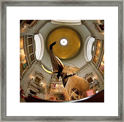 Interiors Of A Museum, National Museum Framed Print by Panoramic Images