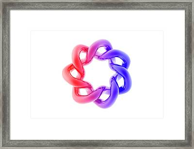 Interlocking Tori Framed Print