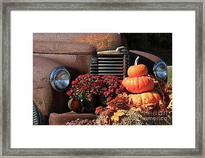 International Autumn Framed Print