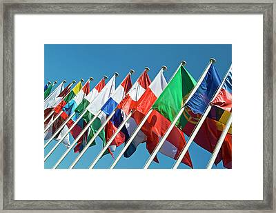 International Flags Framed Print