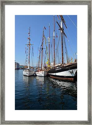 International Sailing Festival In Bergen Norway 2 Framed Print