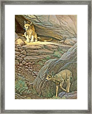 Interruption-cougar And Fawn Framed Print by Paul Krapf
