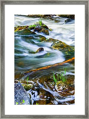 Intimate With River Framed Print by Elena Elisseeva
