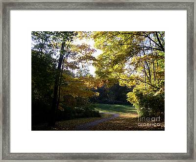 Into His Light Framed Print