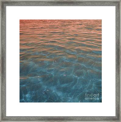 Into The Blue At Sunset Framed Print by Cindy Lee Longhini