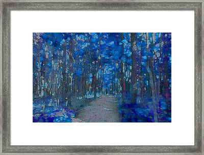 Into The Blue Forest Framed Print by Dan Sproul