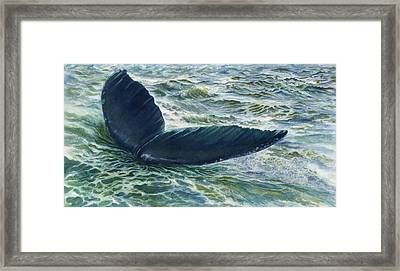 Into The Deep Framed Print by Connie Ely McClure