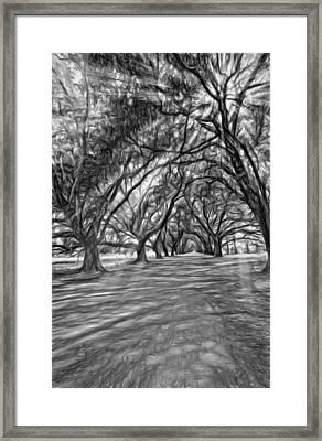 Into The Deep South - Paint 2 Bw Framed Print by Steve Harrington