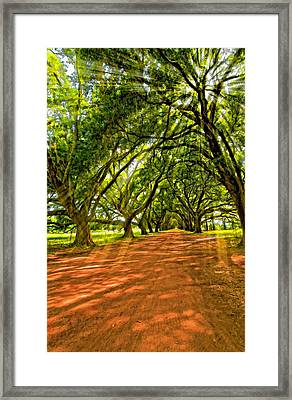 Into The Deep South Paint Framed Print by Steve Harrington