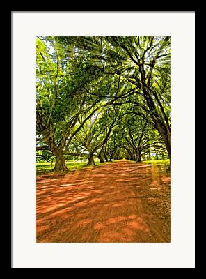 Evergreen Plantation Digital Art Framed Prints
