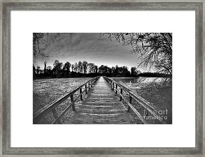 Into The Distance Framed Print