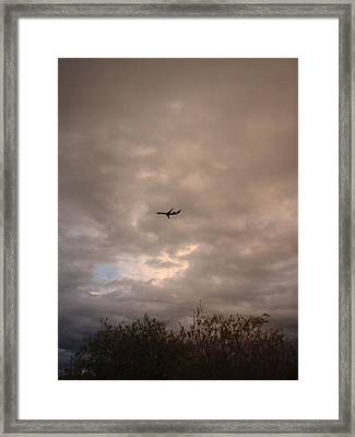 Into The Evening Sky Framed Print by Yvette Pichette