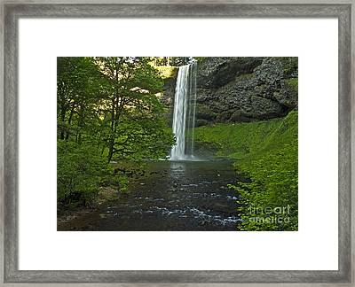 Into The Green Framed Print by Nick Boren