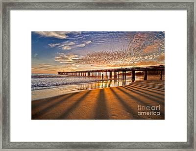 Into The Light Framed Print by Alice Cahill