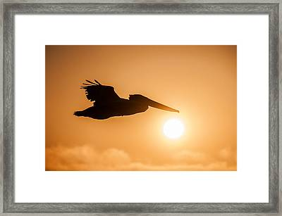 Framed Print featuring the photograph Into The Light by Brian Bonham