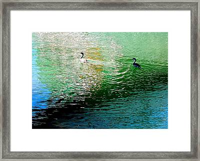 Into The Light Framed Print by Brian D Meredith