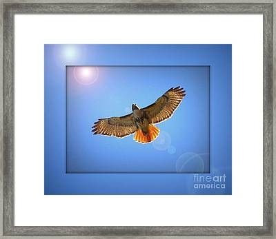 Into The Light Framed Print by Carol Groenen