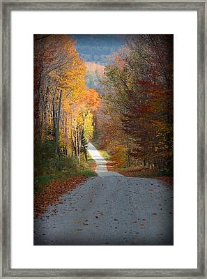 Into The Light Framed Print by Christine Nunes