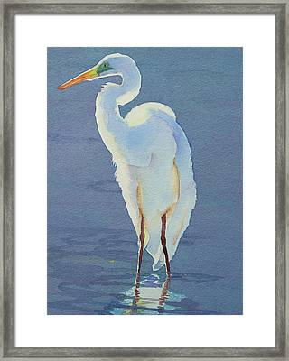 Into The Light Framed Print by Judy Mercer