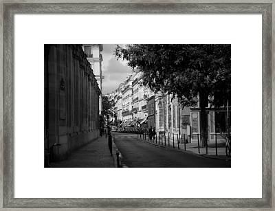 Into The Light Framed Print by Lee Stickels