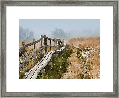 Into The Mist 00 Framed Print