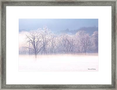 Into The Mist Framed Print by Laurinda Bowling