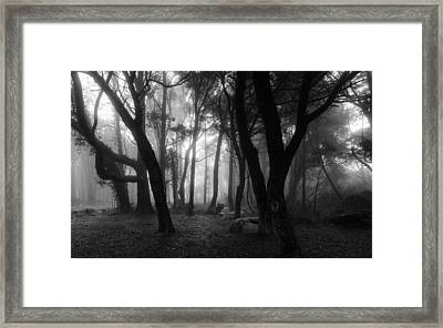 Into The Mystic Framed Print by Marco Oliveira