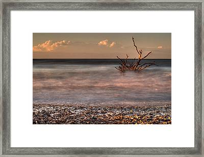 Into The Mystic Framed Print by Serge Skiba